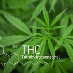 CBN / Cannabinol - Frequently Asked Questions 1